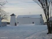 Wild pump on snowy farm