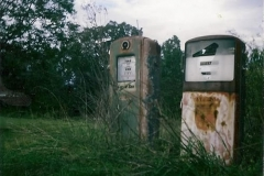 wild South Carolina Lost Highway